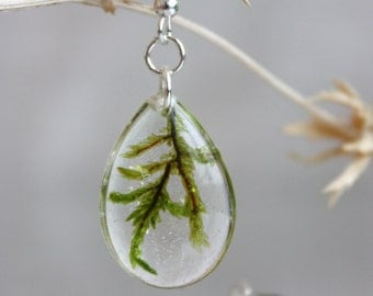Real moss earrings Silver fittings. Dangle earrings. Earrings with moss.  Epoxy resin earrings. Ear drops. Ear drops with real moss.