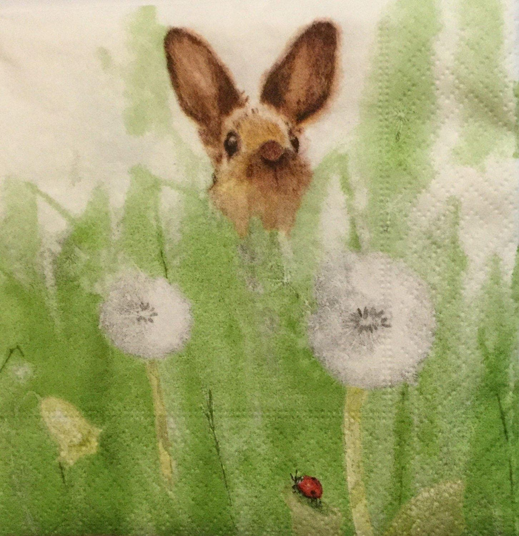 3 Decoupage Beverage Napkins Rabbit In Spring Meadow 10