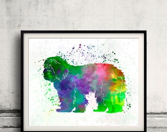 Portuguese Sheepdog 01 in watercolor - Fine Art Print Poster Decor Home Watercolor Illustration Dog - SKU 2304