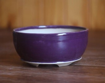 Round purple bonsai or succulent planter pot