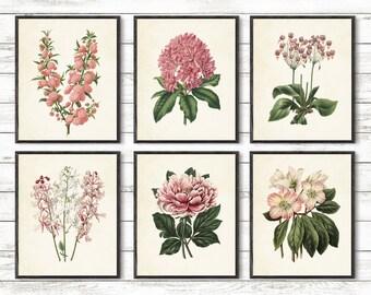 Botanical Garden Print, Pink flowers Art, Garden flowers glicee Print set, Botanical poster,Flowers Decoration, pink Garden Art, 8x10 prints