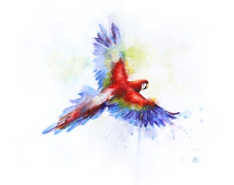 Flying parrot, parrot painting, Original watercolor, Boba painting, Watercolor art