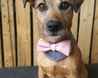 Dog wedding bandana. Dog costume. Dog bow tie. Dog Outfit. Dog  bandana. Dog collar. Dog Wedding Attire. Dog tuxedo. Pink & Grey Dog Collar