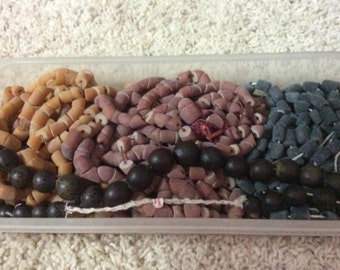 bead new amber nut cut