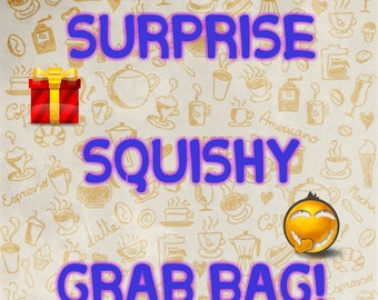 Surprise Squishy Grab Bag!