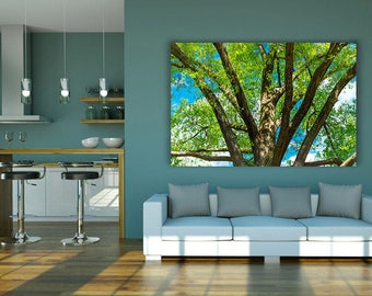 Tree canvas art, nature photography, tree photo print, large green wall decor, tree on canvas, wall hangings