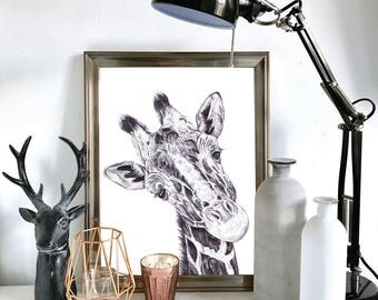 Black and White Giraffe Print, Illustration, Wall Art, Drawing A3, A4, A5