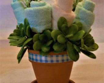 Baby Washcloth Potted Plant