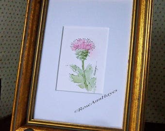 Texas Pink Thistle Original Watercolor Texas Wildflower Painting ACEO Flower Floral Garden Housewarming Gift Miniature