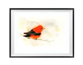 Bird Prints Bathroom Wall Art Decor Red watercolor Nature painting Red Bird Scarlet Tanager Song bird, LaBerge N