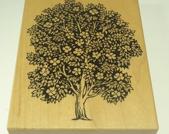 Magnolia Tree  Etsy Studio