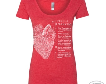 Womens Anatomical HEART Scoop Neck Tee - T Shirt S M L XL XXL (+ Colors)