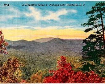 Vintage South Carolina Postcard - Autumn in the Mountains (Unused)
