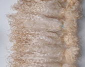 Teeswater raw wool long locks 12 in,  100 gr unwashed white very soft fiber, Doll Hair, felting, spinning, lock spin, lafiabarussa