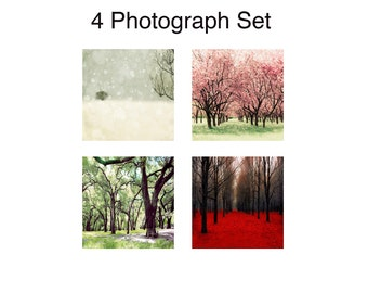 SALE, 4 Seasons Wall Art, Nature Photography, 4 Seasons Tree Print, Four Seasons Art, 4 Seasons Tree, Four Seasons Wall Art