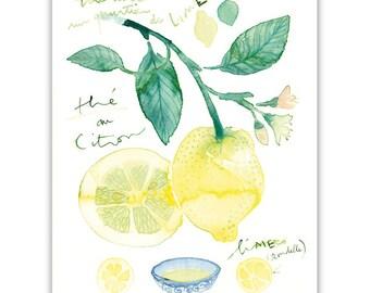 Lemon tea poster, Citrus print, Kitchen wall art, Food art, Pastel home decor, Watercolor painting, Botanical print, Yellow kitchen decor