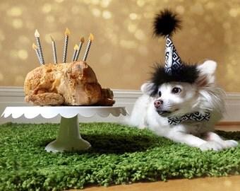 Dog Birthday Hat, Dog Party Hat, Black and white Party Hat, Dog Birthday Hat