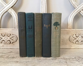Vintage Animal Book Stack - Ernest Thompson Seton Book Stack - Tattered Green Books - Boy Scouts