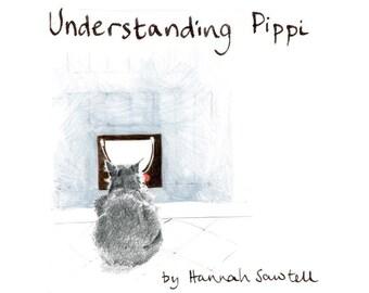 Understanding Pippi