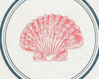 Sea Shell Coasters, Set of 10