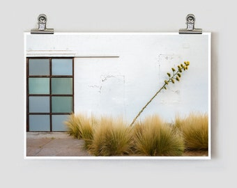 Gallery Minimalist Yucca Marfa Texas Fine Art Photograph