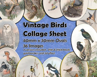 Vintage Birds Printable Ovals Digital Collage Sheet  - 40mm x 30mm ovals  - 36 different images - perfect for jewelry making etc Bird Ovals