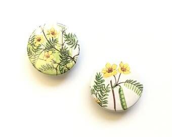 Flower Magnets / Golden Nature Guide Fridge Magnets / Partridge Peas Bee Blossom / Office Organizer / Dorm Room / Home Decor