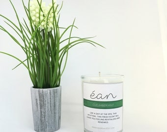 Cucumber Mint Soy Candle, Refreshing Scent, Strong Scent Candle, Friend Candle