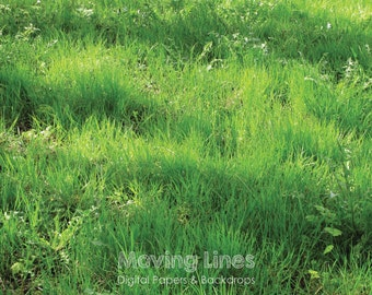 20% SALE! Spring Grass Photo Backdrop, Green Wallpaper, Lush Hay Backdrop, Product Photography Background, Outdoors Printable Digital File
