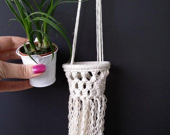 Indoor planter gift set Real plants Succulent planter Hanging wall planter Modern macrame hanger Live succulent gift Boho green succulent