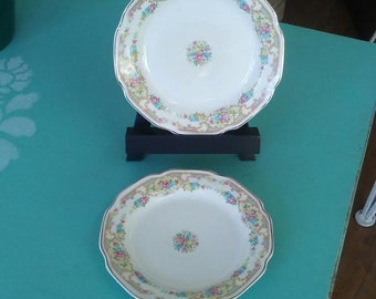 Mt. Clemens Plates, Bread and Butter Plates, Vintage Plates, China Plates, Small Porcelain Plates, Pastel Flower Plate Set