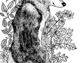 Wolf and Flowers Print Illustration Nature Wolves Floral - 11 by 16 artwork
