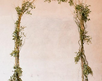 Birch Pole & Curly Willow Wedding Arch with Lanterns,Greenery options