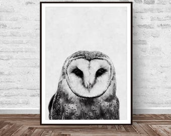 Owl Print, Black and White, Owl Wall Art, Owl  Art, Animal Print, Printable Wall Art, Woodlands Decor, Printable Art, Instant Download