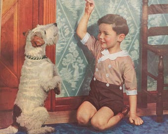 1930's Wire Fox Terrier Magazine Picture Father's Day Gift!