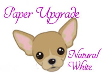Paper Upgrade Media/Fountain Pen Friendly 25%cotton 24lb Natural White