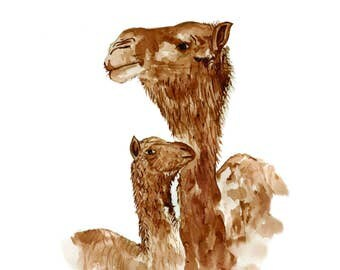 Limited Edition Camel Watercolour Print
