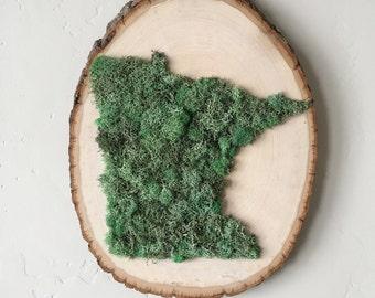 Minnesota State Art. Wood Slice Art. Moss Wood Slice. Bohemian Decor. Wall Accent. Bookshelf Decor. Minnesota Moss Wood Slice Art