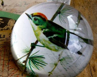 Vintage Style Glass Paperweight with Bird Design