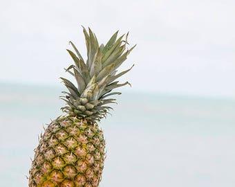 Pineapple On The Dock // Fine Art Print // Coastal Decor