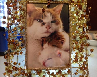 4x6 photo frame with many gold beads  currently with a kitty picture
