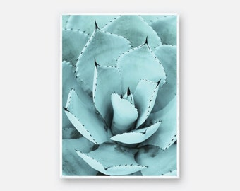 Agave Plant Print, Agave Poster, Succulent Print, Succulent Poster, Agave Zoom Print, Desert Plants Print, Home Decor Agave, Cactus Poster