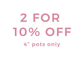 "x2 for 10% Off! 4"" Indoor and Outdoor Pots or Planters"
