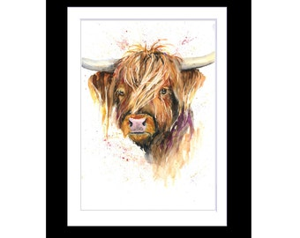 HIGHLAND COW limited PRINT of original art watercolour painting by Helen Rose 162