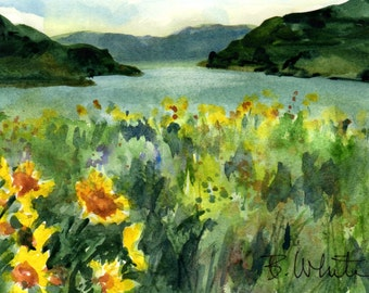 Columbia Gorge July original #24 - original watercolor painting by Columbia Gorge artist Bonnie White - Columbia River Gorge
