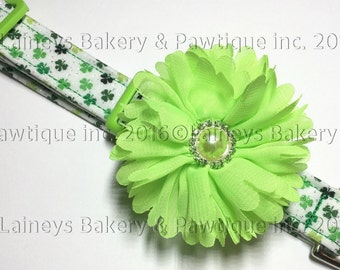Laineys Tiney Shimmery Shamrocks Dog Collar