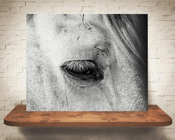 Horse Photograph - Fine Art Print - Black & White Photo - Wall Art - Farm House Decor - Wall Decor - Equine Photography - Pictures of Horses