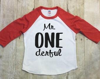One Birthday Shirt-First Birthday Boys-Mr. Onederful Birthday Shirt-Raglan Sleeve-One Baseball Shirt-Smash Cake Shirt-Made in the USA