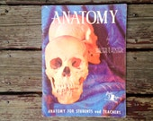ANATOMY by Walter T. Foster . 1950's How to Draw Anatomy Book . Nudes Character Drawing . Art Artist . Student or Teacher Reference