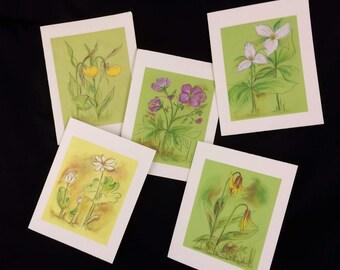 5 note cards of WV wildflowers in pastel & ink